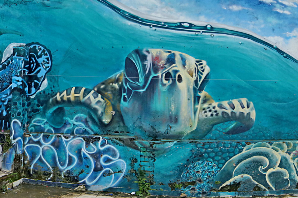 desarrollo-social-mural-tortuga
